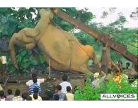 64052699-seven-elephants